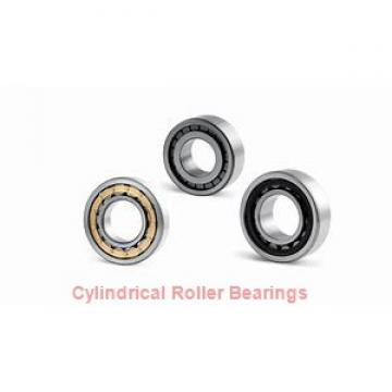 American Roller SCS 143 Cylindrical Roller Bearings