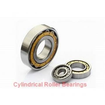 American Roller D 6224 Cylindrical Roller Bearings